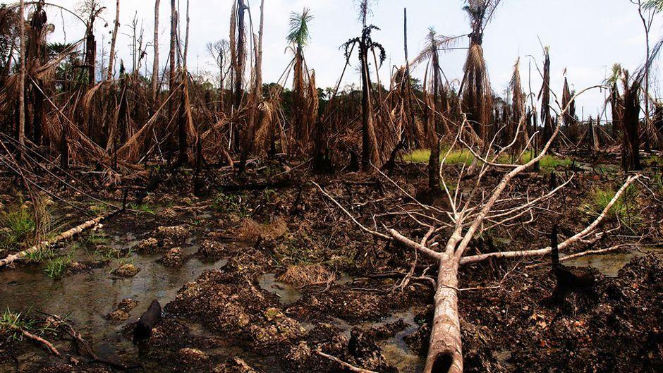 Nigeria's agony dwarfs Gulf oil spill