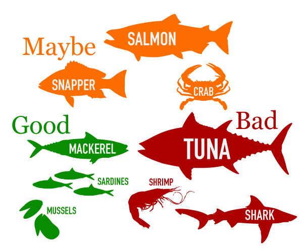 A guide to the best and worst choices for fish consumption.