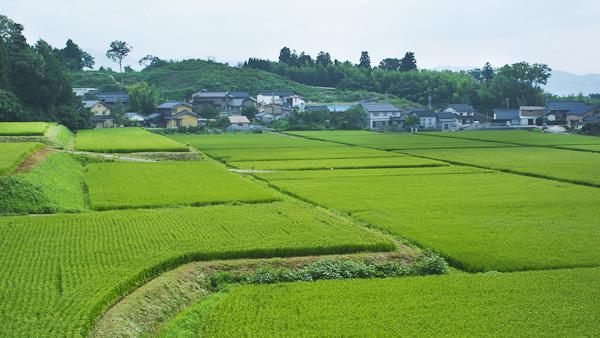 Kanazawa-spring