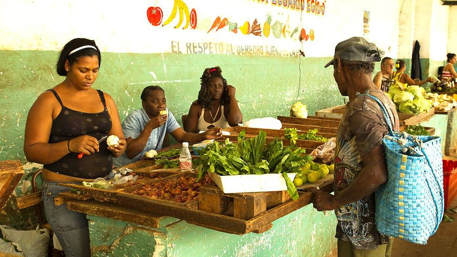 Cuba seeks to guarantee food supplies in changing climate