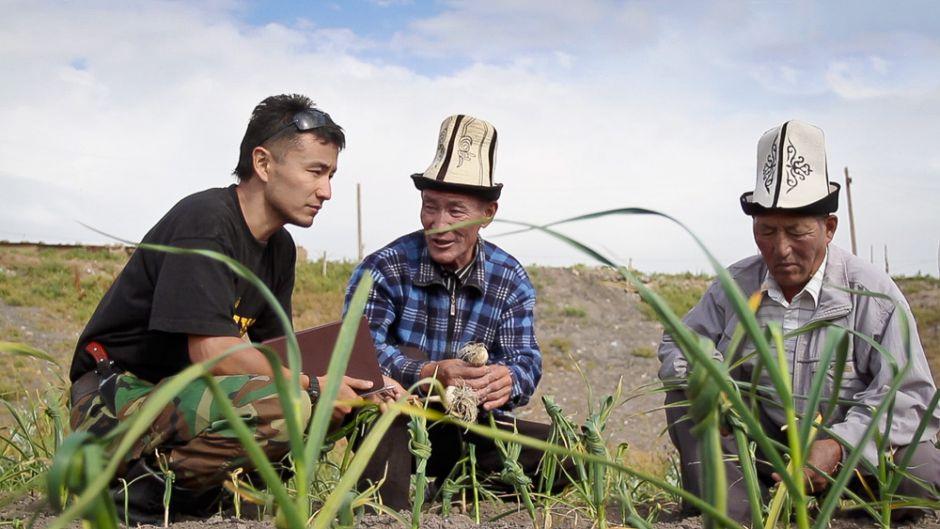 UNU Team at he Garlic plantation.