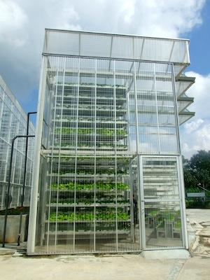 A Sky Green farm tower. Photo: Kalinga Seneviratne/IPS.