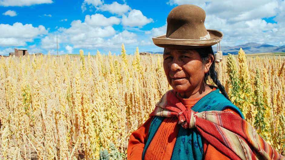 Quinoa Brings Riches to the Andes