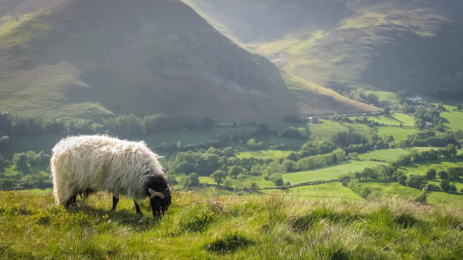 Champions of cumbria s human landscapes our world for Landscape pictures