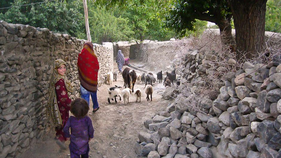 氷河融解の大洪水に備えるパキスタン