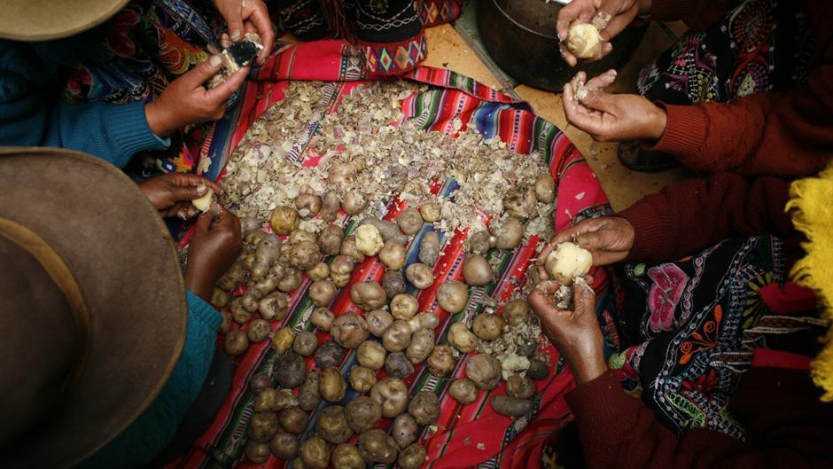 ペルーのポテトパークが育む生物多様性