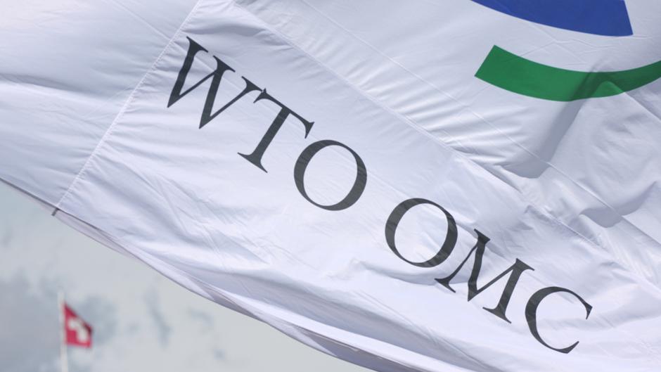 新自由主義は現実的な力を持っている。つまり、法的に拘束力のある条約があり、国際機関である世界貿易機構(WTO)が存在する。写真:WTO