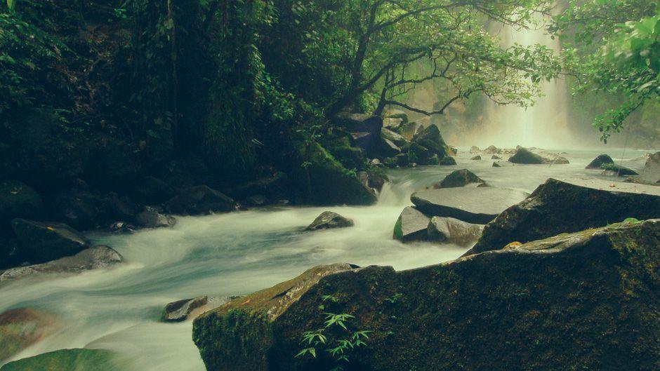 倫理と環境:コスタリカの教訓