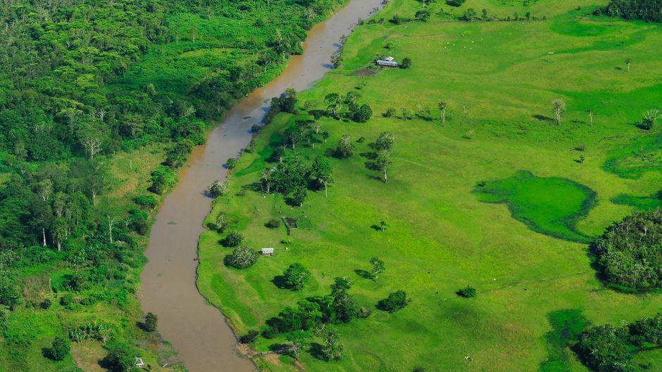 空から見たアマゾンの熱帯雨林。ブラジルのアマゾナス州の州都マナウス近郊。 写真