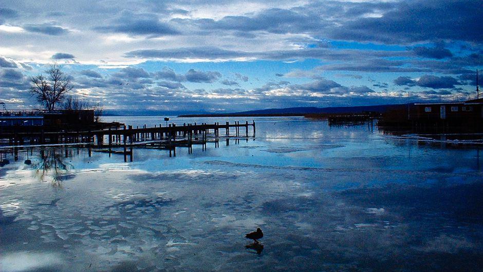 湿地外交:国境をまたぐ保全とラムサール条約