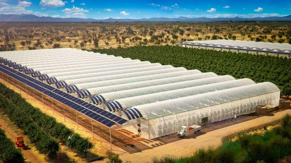 砂漠での食料栽培が世界の食料危機を救う?