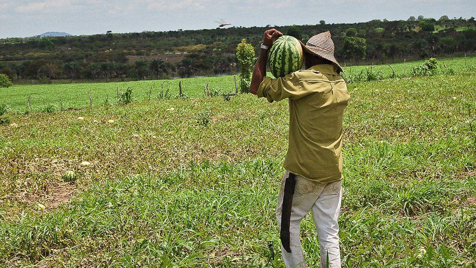 ブラジル干ばつ対策への 実生活での実験