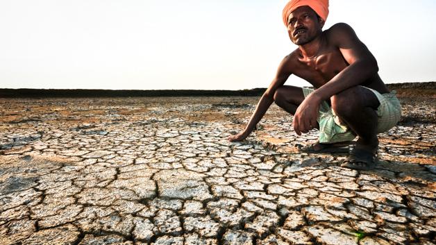 The Economics of Salt-induced Land Degradation and Restoration