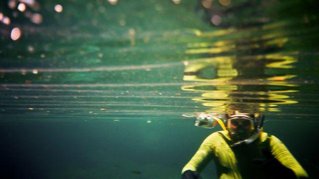 Pollutants in aquifers may threaten Mexico's Yucatan Peninsula